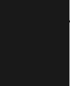 AK EUROPE  montecore logo